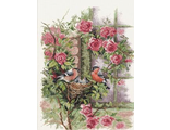 Nesting Birds In Rambler Rose (PN-0008020) vkn